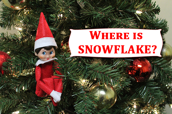 Where is Snowflake?