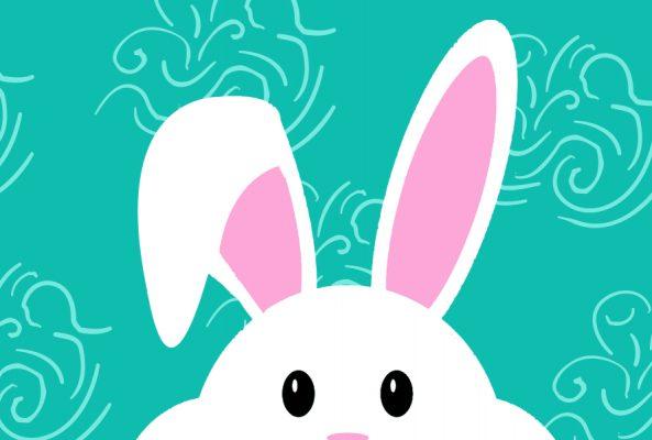 BunnyCares WebsiteHighlight